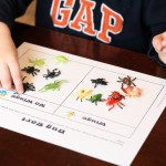 Bugs and Butterflies Activity Pack