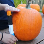 3 Quick and Easy Pumpkin Math Activities
