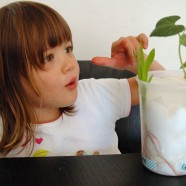Kids' Science: Growing Seeds with Toddlers
