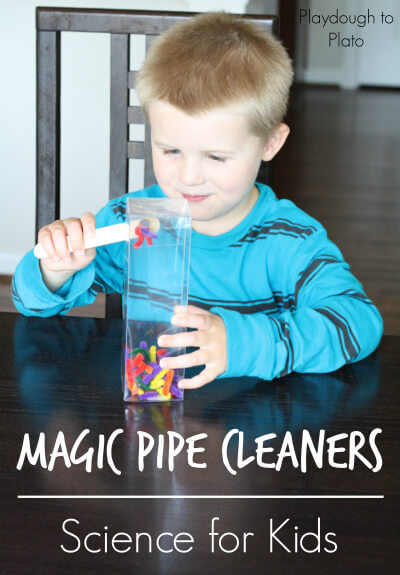 So fun! Simple set up science experiment for kids: Magic Pipe Cleaners. {Playdough to Plato}