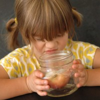 Awesome science experiment for kids! Grow GERMS!!!