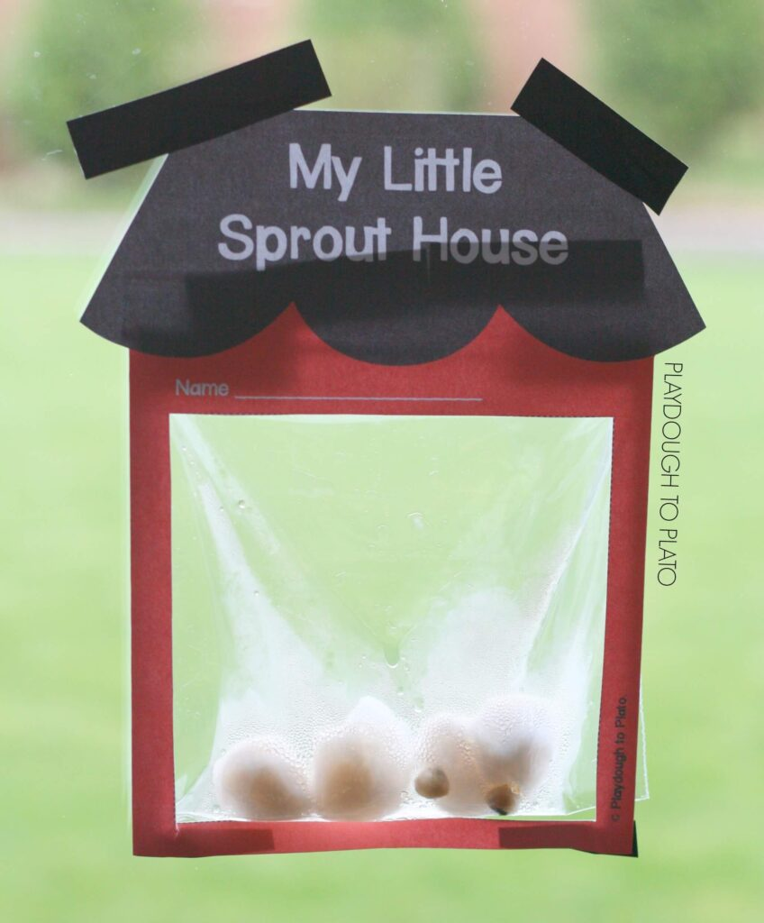My Little Sprout House - Playdough To Plato