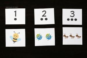 Bug Number Cards