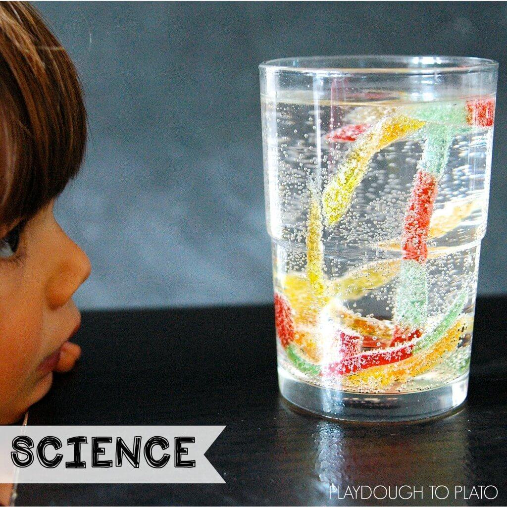 easy preschool science activities grade activities playdough to plato 422