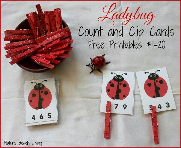 ladybug-cards1