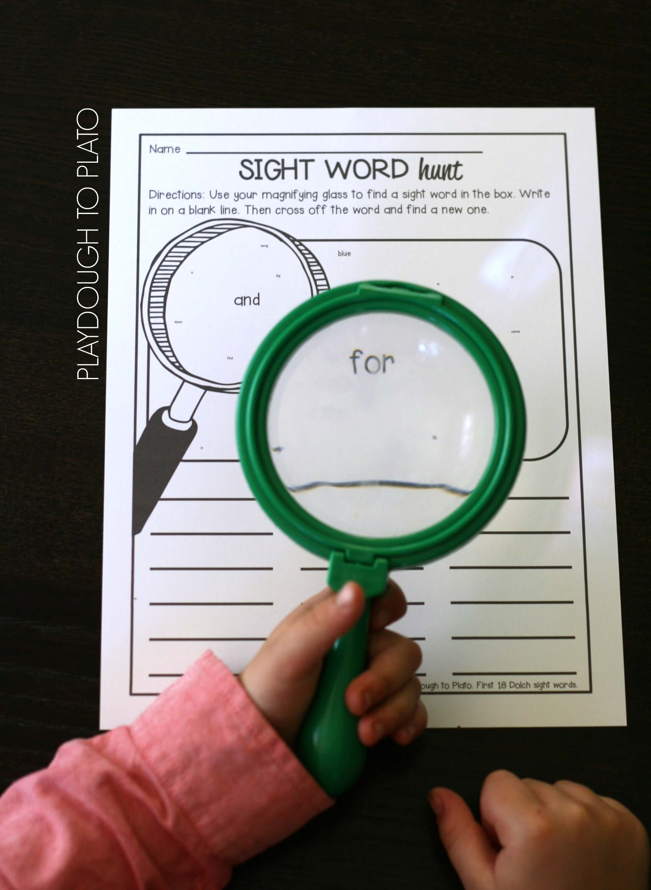 Free first grade science worksheets