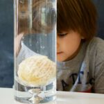 Orange Buoyancy Science Experiment