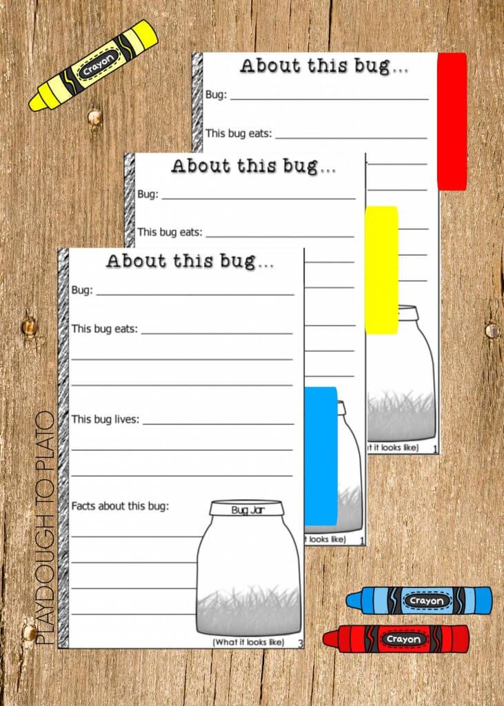 Free Bug Book!! Fun kids' science project.