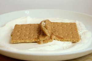 Graham Cracker Plate Tectonics