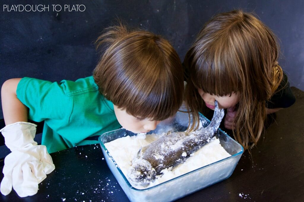 Rad kids science experiment! Make a mummy fish.