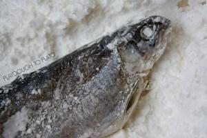 Making a Mummy Fish