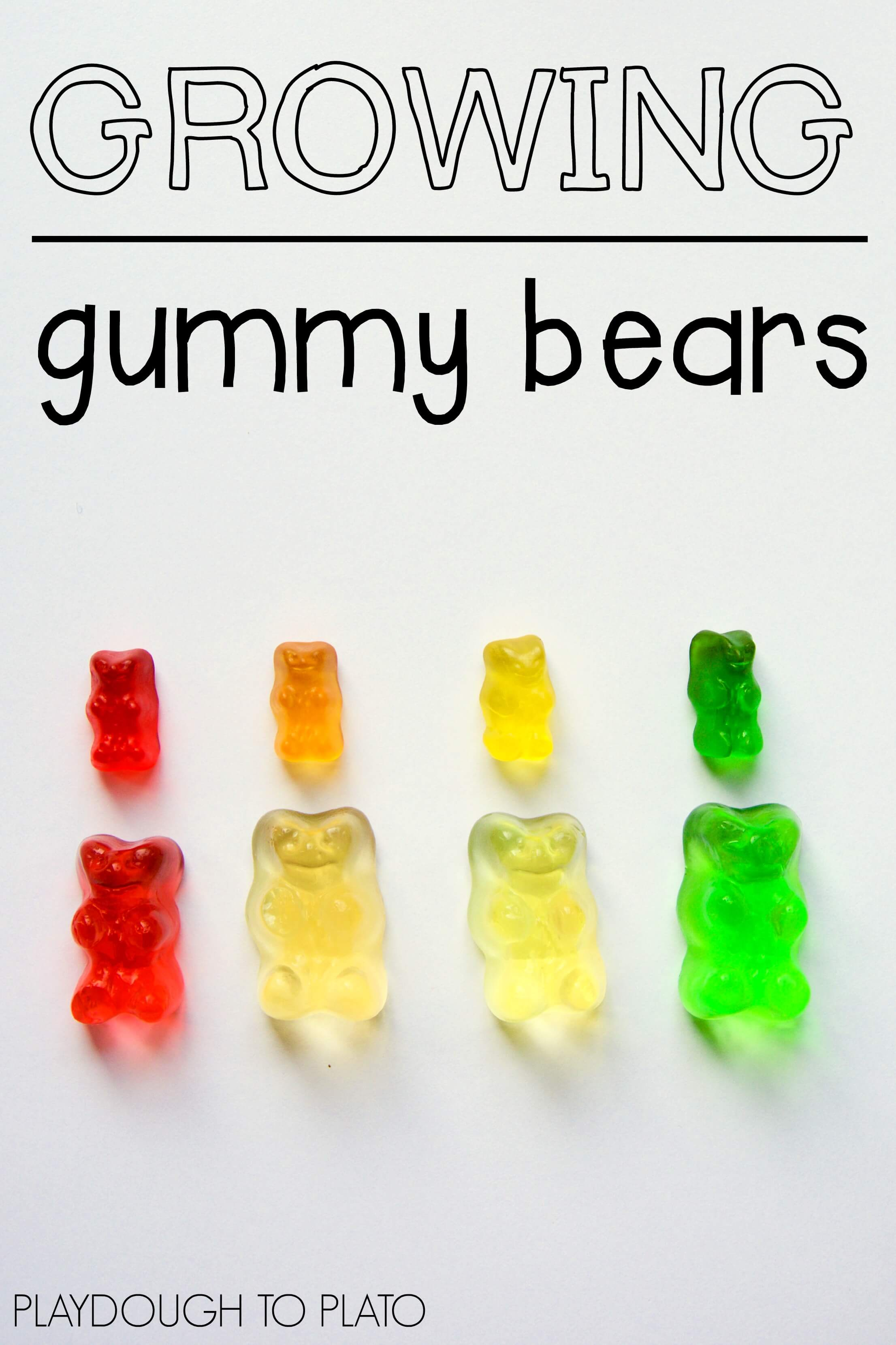osmosis in gummy bears Investigating the effect of different concentrations of glucose on the percent change in mass of gummy bears according to their respective colours in this experiment osmosis is the main process taking place.