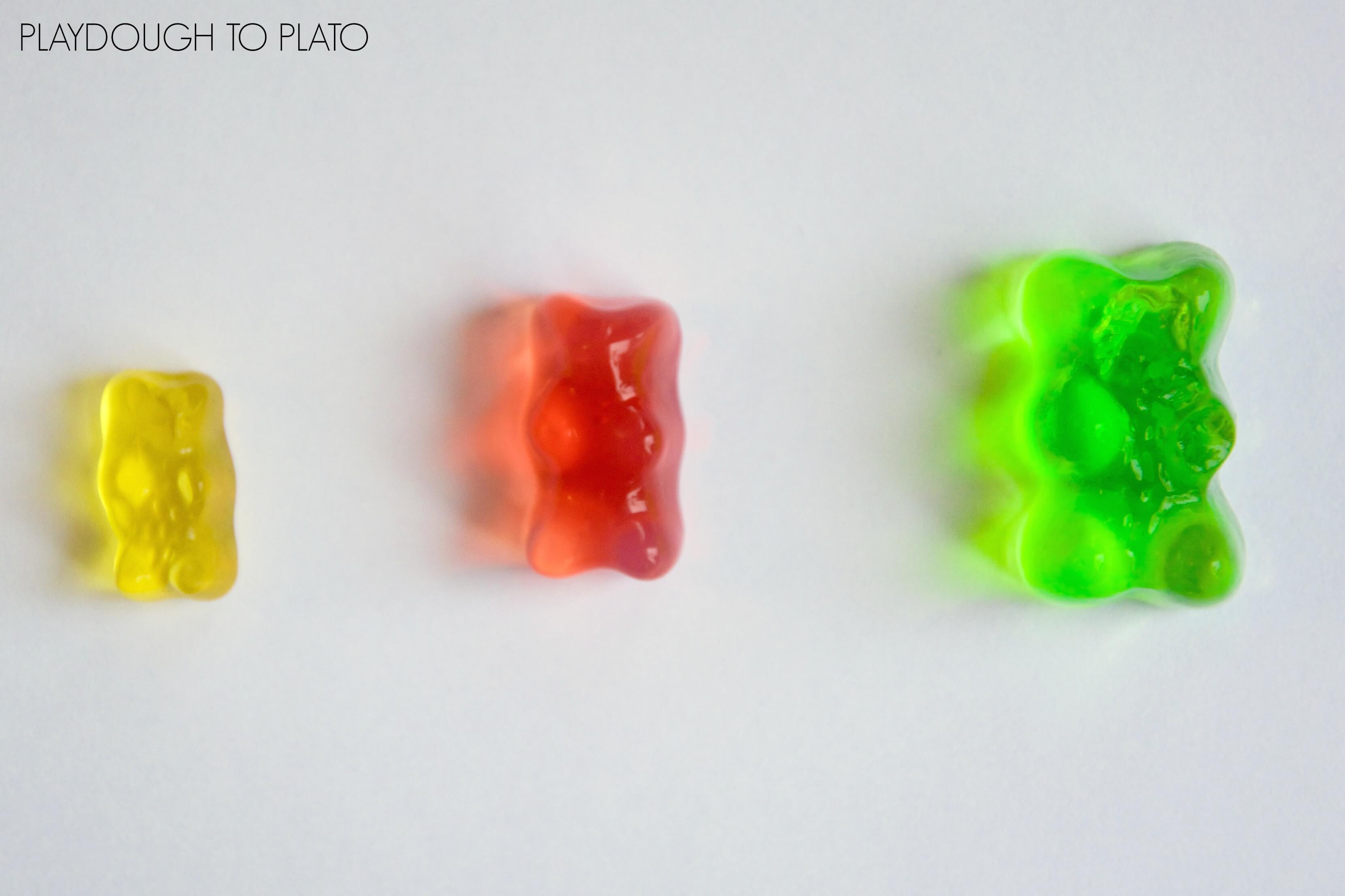 gummy bear lab Instructions on gummy bear osmosis experiment: check the video at the beginning of the article to see how to conduct this experiment we used three types of solvent (water, salt water and vinegar) but you can experiment with any type of solvent.