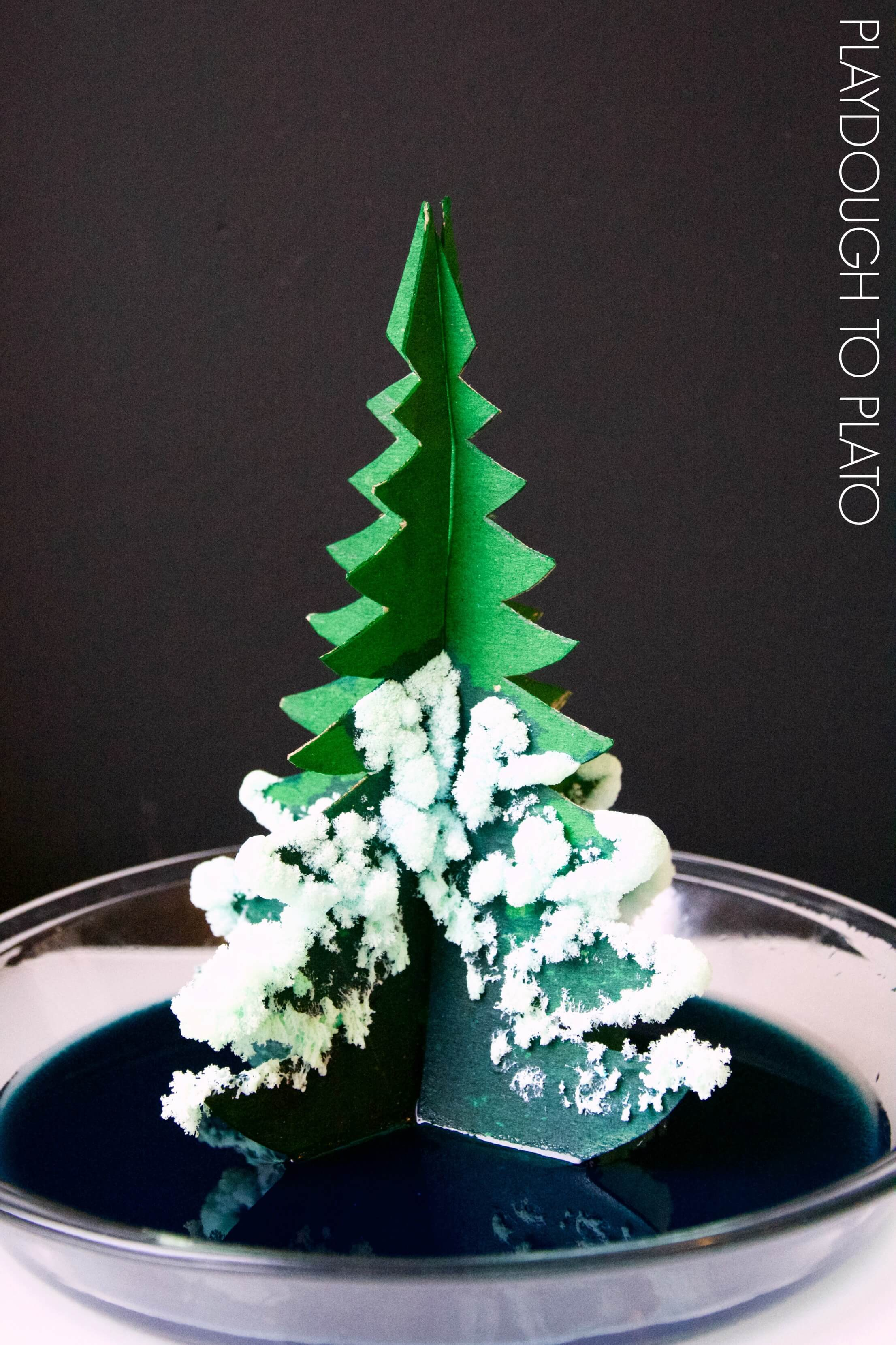 awesome crystal christmas trees this would be a perfect christmas science activity for kids - Crystal Christmas Tree