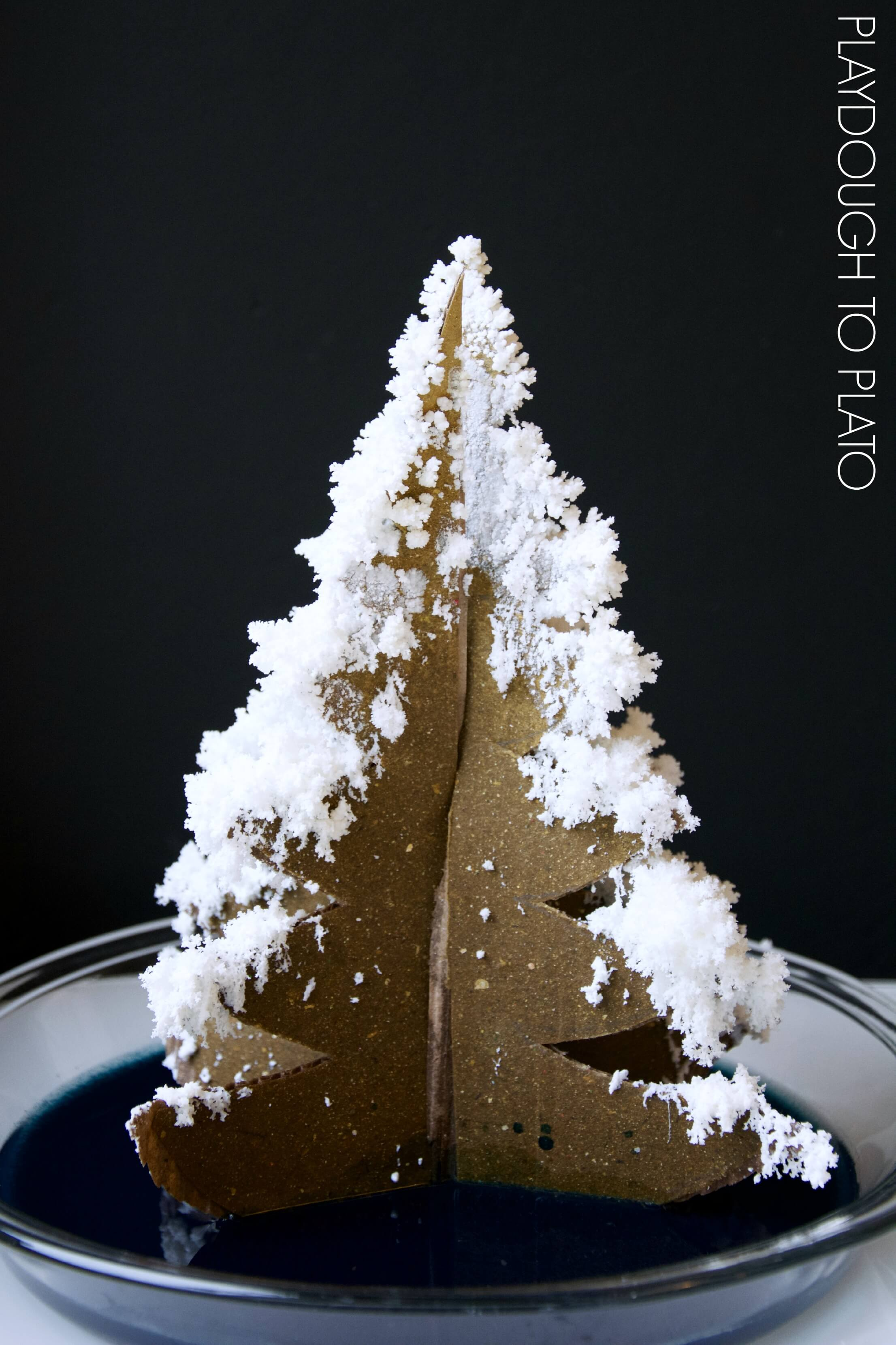 grow a crystal christmas tree what a fun christmas science activity for kids - Crystal Christmas Tree