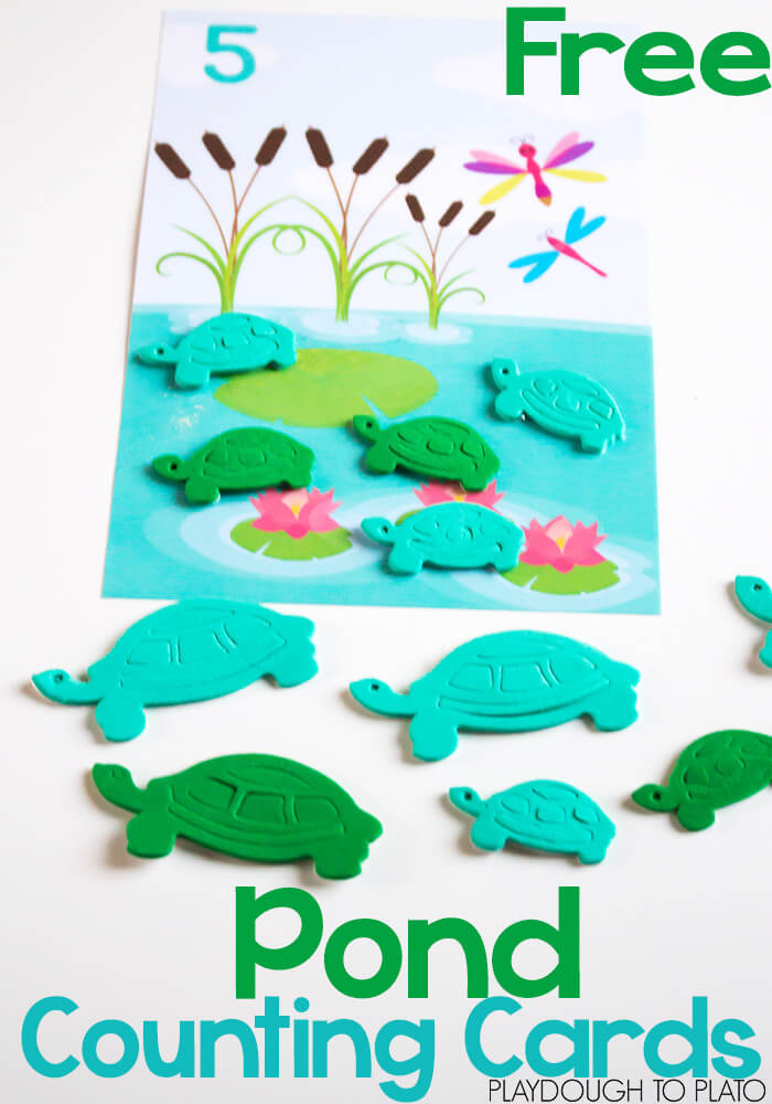 Pond-counting-cards-pin