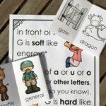 Hard and Soft G Little Reader Books