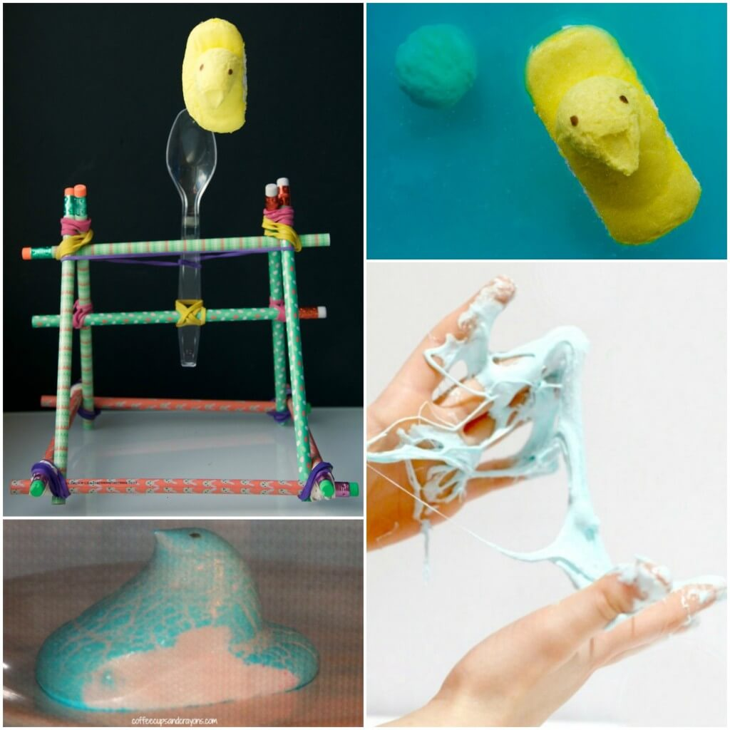 Lots of fun Peeps Activities for Kids!