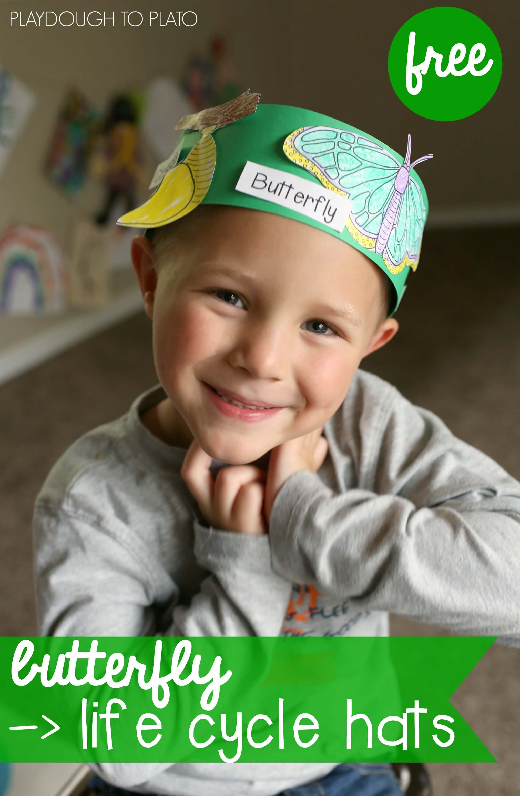 Free Butterfly Life Cycle Hats on preschool counting worksheets