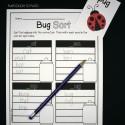 Bug Word Family Sort