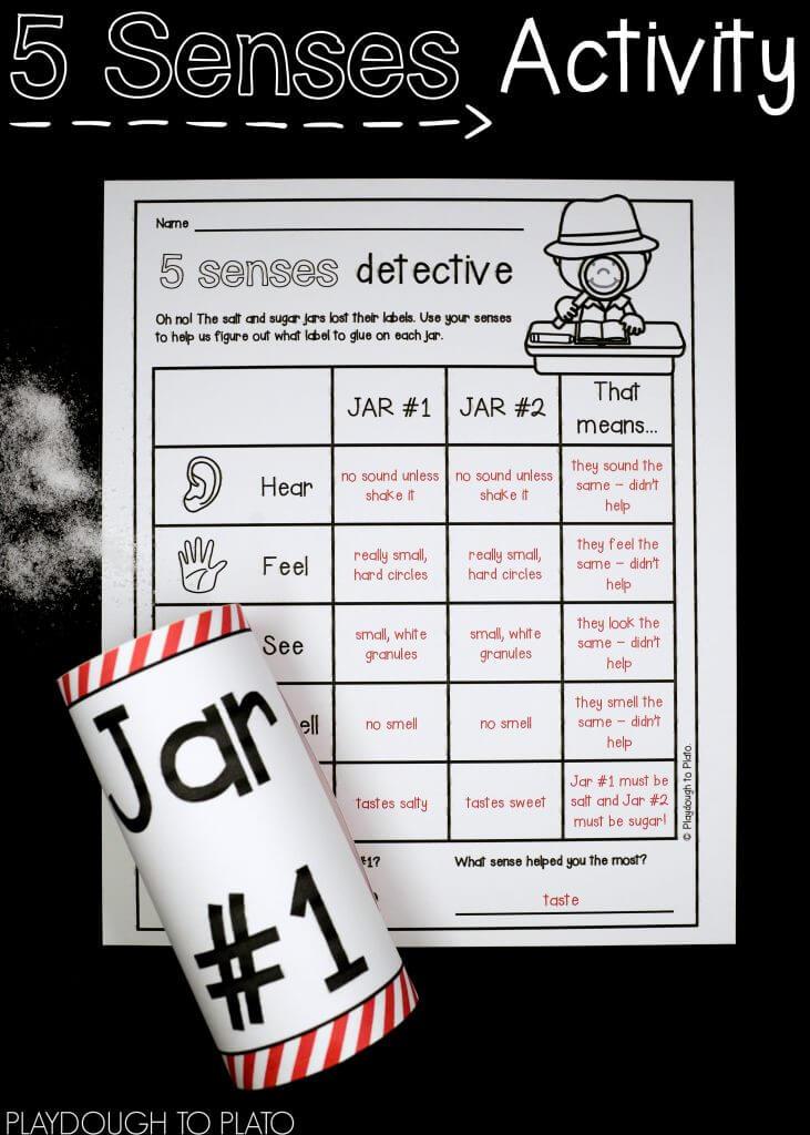 Use your senses to identify salt vs. sugar!