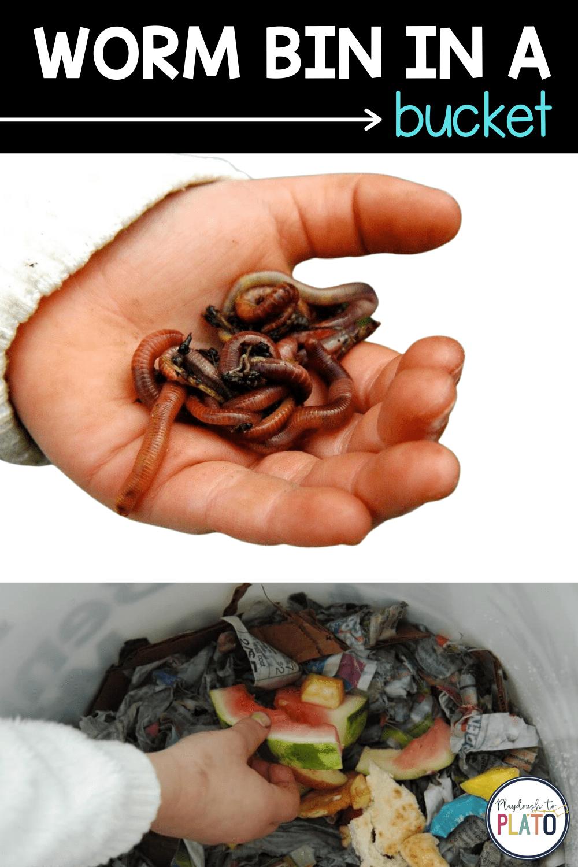 Worm Bin in a Bucket